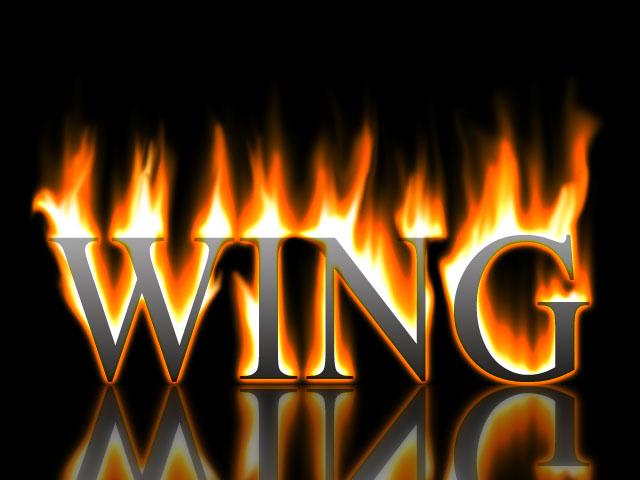 logo-wingwy